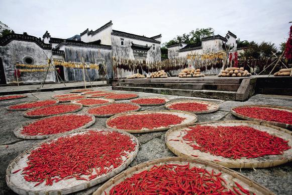 Un village qui ne sombre pas dans l'Anhui
