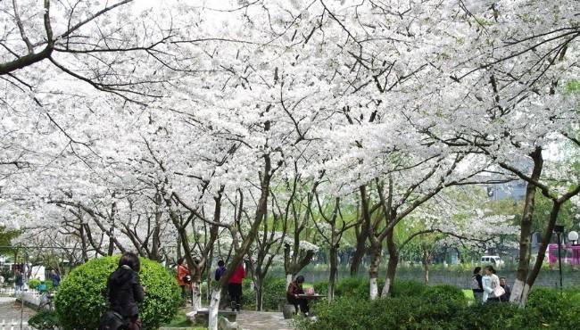 Huit destinations pour un séjour en pleine nature dans le sud de la Chine
