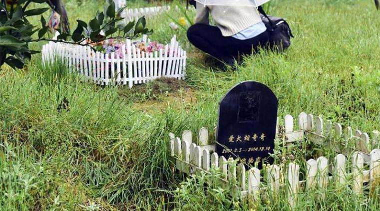 Galerie : le cimetière des animaux de compagnie à Chengdu