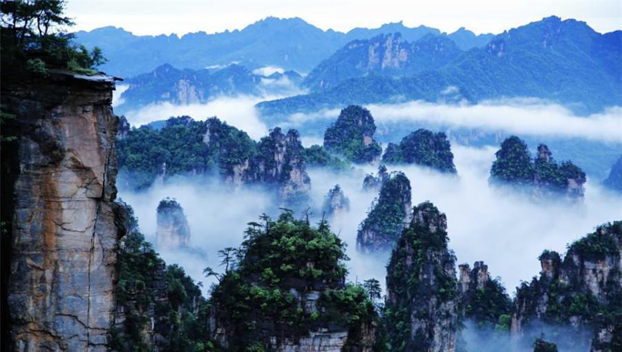 Les piliers de grès de Wulingyuan enveloppés dans les nuages
