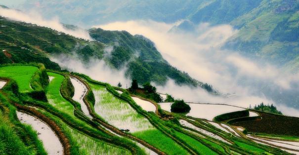Huit photos qui illustrent le charme irrésistible de la province du Guizhou