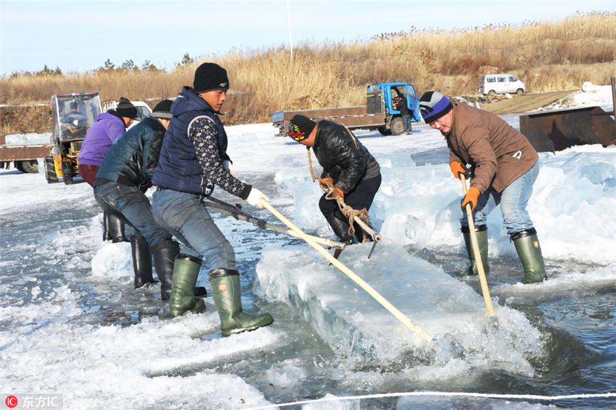 Déménageur de glace à Harbin, un travail difficile dans un environnement glacé
