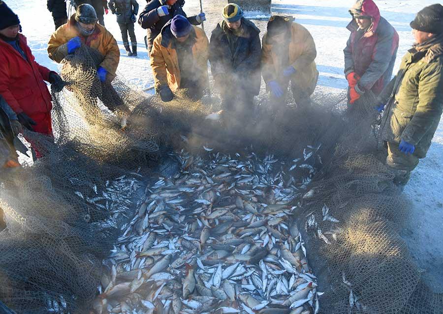 Linterdiction à la pêche plechtcheevo le lac