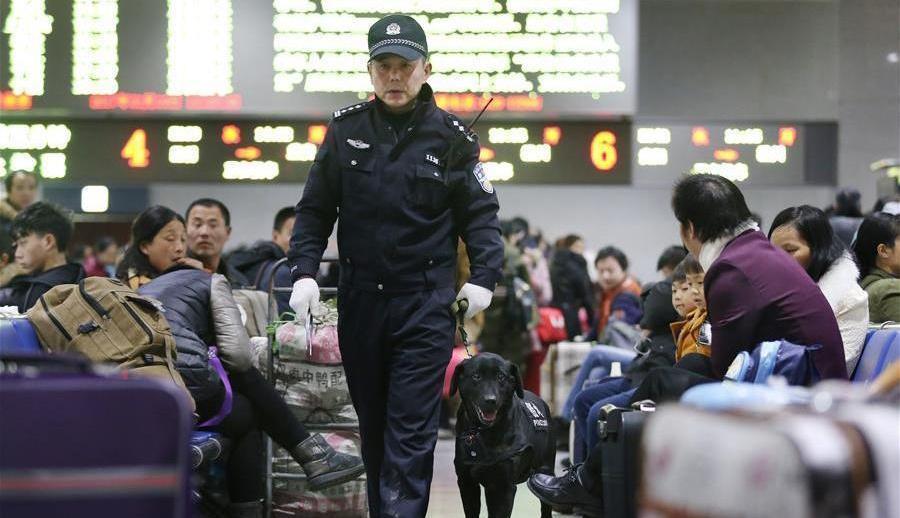 Guilong, chien de détection en patrouille à la gare de Guiyang