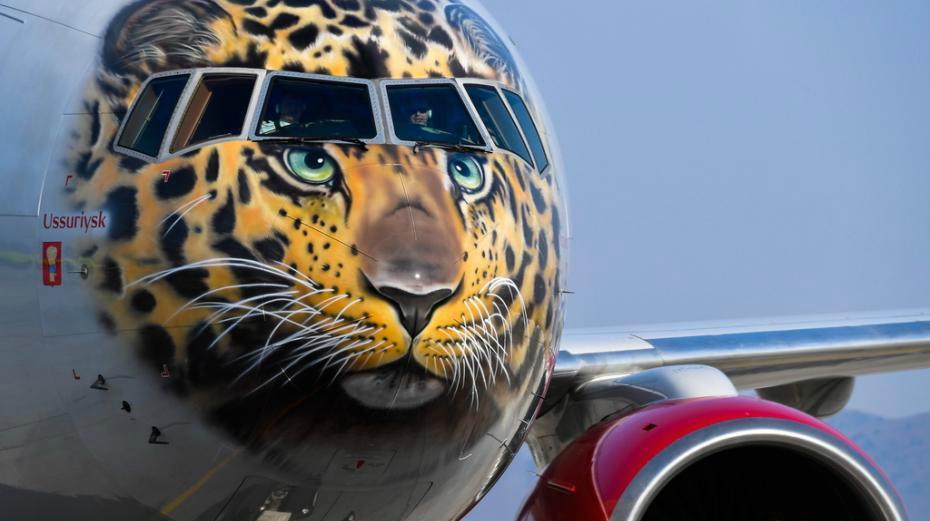 La Russie promeut la protection du léopard en le peignant sur un avion