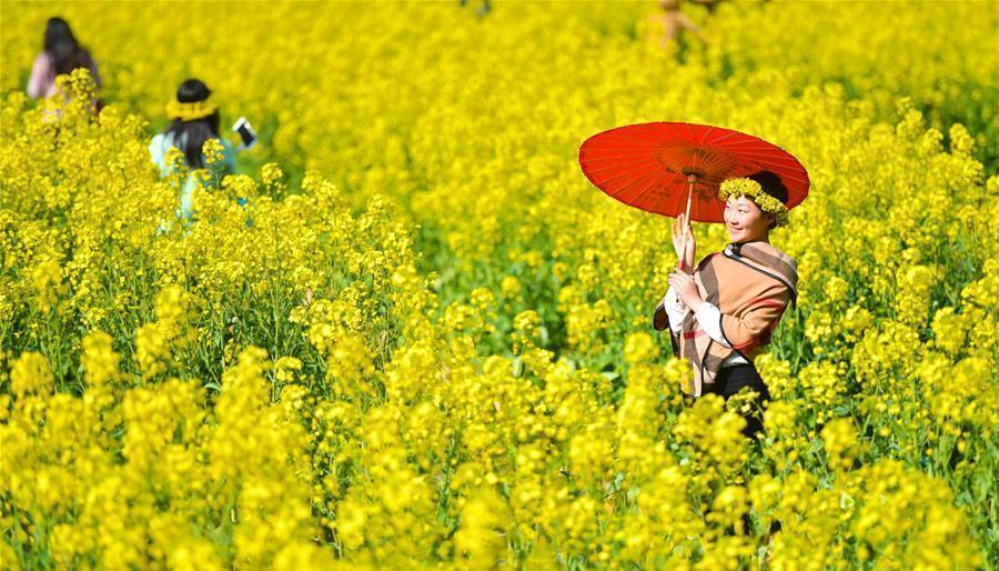 Jiangxi : le xian de Wuyuan entre dans sa meilleure saison