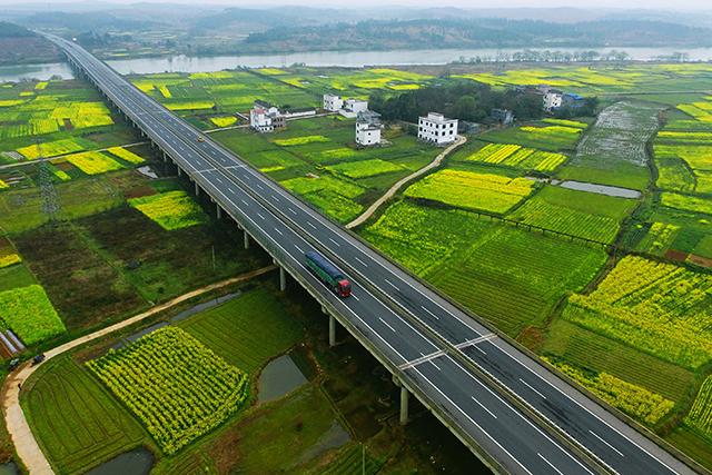Les champs de colza éblouissants du xian de Dao
