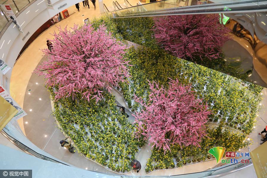 Chongqing : 3000 m2 de fleurs de colza s'épanouissent dans un centre commercial