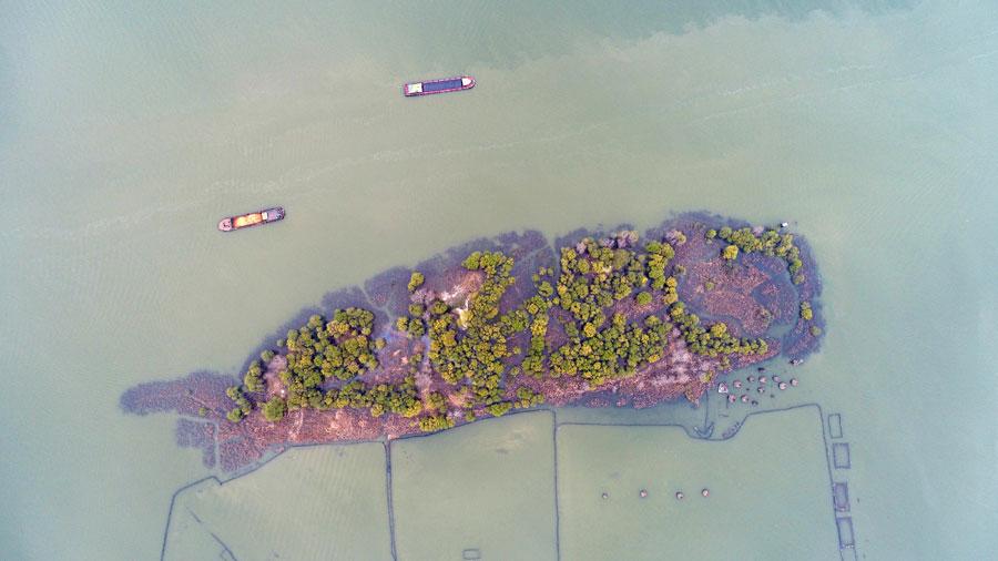 Vues aériennes d'une île en forme de poisson dans l'est de la Chine