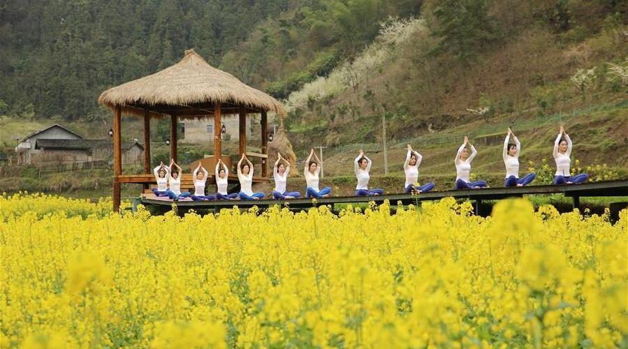 Des fans de yoga pratiquent leur discipline sur des champs de fleurs à Zhangjiajie