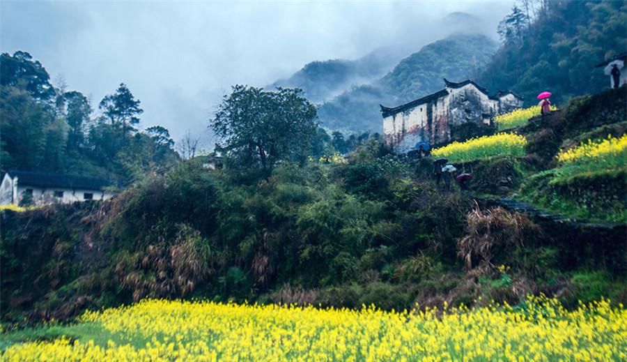 Les plus beaux paysages printaniers de Chine vus par les amateurs de photographie