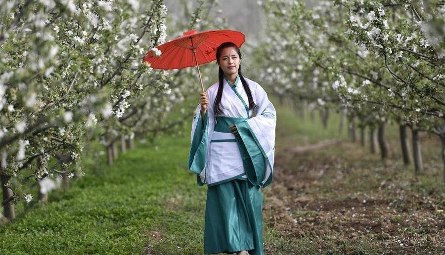 Défilé de costumes traditionnels Han dans le Gansu