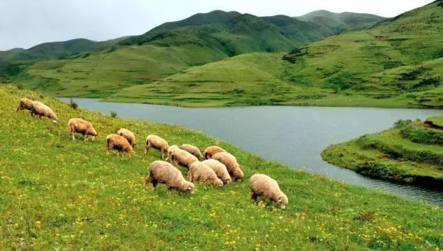 Guizhou : une ville dont la température moyenne ne dépasse pas 20°C en été