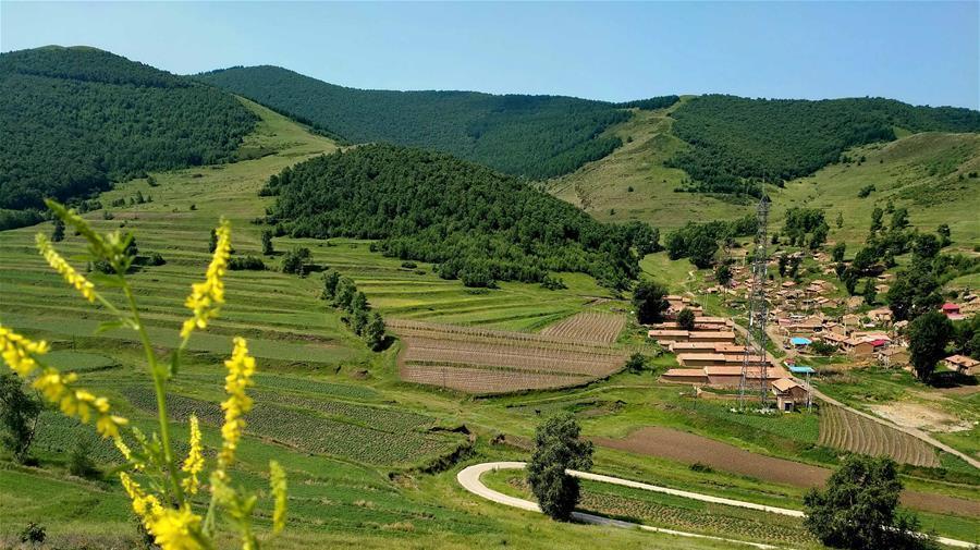 Les paysages estivaux de Chongli