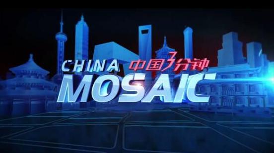 Colloque sur la diffusion à l'étranger du programme China Mosaic