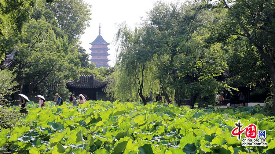 Des visiteurs affluent au célèbre jardin Zhuozheng de Suzhou