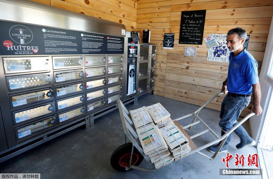 Un distributeur automatique d'huîtres installé sur l'île de Ré