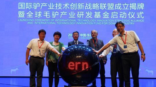 Fondation d'une alliance internationale d'exploitation de produits venant d'ânes à Dong'e