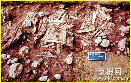 2 Chinesische Arch?ologen ,fossilen überreste ,menschlichen Spezies ,Fossilien,Yuanmou,Entdeckung,Geschichte,S?ugetiere,Dreischluchten,Longgupo,Kulturrelikten