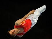 Lu Chunlong,Chunlong Lu,Trampolin,springen,Weltmeister,Turnen,Dong Dong ,Peking,2008,Video,Jason Burnett ,Henrik Stehlik ,deutscher