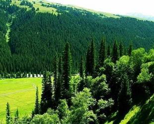 Die autonome Präfektur Ili der Kasachen im Uigurischen autonomen Gebiet Xinjiang ist ein beliebtes Reiseziel. Über 47 ethnische Gruppen sind hier vertreten, und den Besucher erwarten wunderschöne Berge, Flüsse und Wälder.