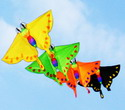 Weifang ist bekannt als die Stadt der Drachen. Seit 1984 findet im April eines jeden Jahres das internationale Drachenfest statt. Dann kommen viele Drachen-Liebhaber aus China und aller Welt nach Weifang.