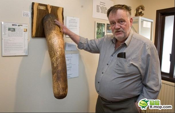 den größten penis