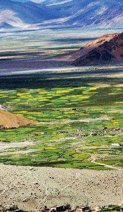 Wer einmal in Tibet war, wird diese 'Reise der Seele' lebenslang im Herzen behalten. Wer noch nicht in Tibet war, träumt sicher von einem Ort, der irgendwie mystisch ist – ganz so, als ob er nicht zur Erde, sondern vielleicht zum Paradies gehört.
