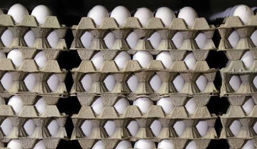 Rund 150 landwirtschaftliche Betriebe in Niedersachsen seien in Verdacht geraten, Eier aus konventioneller Haltung als Bio-Eier deklariert zu haben. Dies gab Bundesverbraucherministerin Ilse Aigner am Montag bekannt.