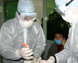 Die WHO hat angekündigt, möglicherweise ein Expertenteam nach China zu schicken. Man habe vollstes Vertrauen in die von der chinesischen Regierung ergriffenen Maßnahmen, aber das globale Interesse an den H7N9-Infektionen mache eine Reaktion seitens der WHO erforderlich.