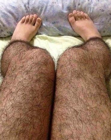 haarige Beine Bilder
