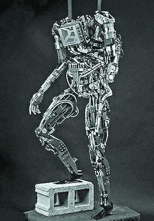 roboter aus china
