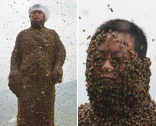 Die summenden Bienen schwärmten zu einem Imker namens She Ping, der versucht, den Rekord für den weltweit schwersten 'Biene-Mantel' zu brechen. Er trug schließlich 468.000 Bienen mit einem Gesamtgewicht von zirka 45,7 Kilogramm.