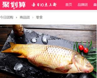 Asiatische Karpfen vermehren sich in den amerikanischen Flüssen und Seen stark und bedrohen das ökologische Gleichgewicht. Seit Sonntag sind die Fische nun offiziell auf Taobao zu finden.