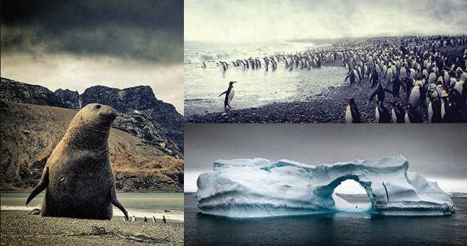Schönheit bei minus 90 Grad: die Antarktis