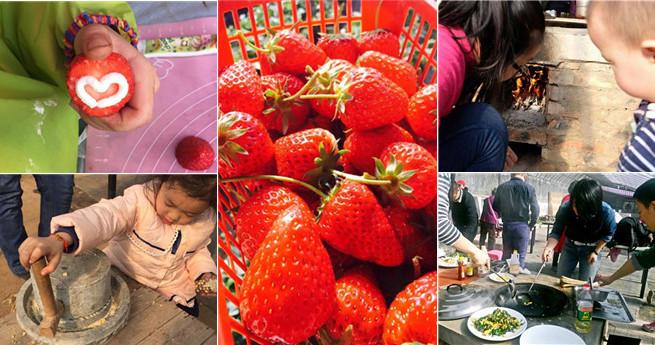 'Taiwanesisches Herz' in Chinas Hauptstadt: zurück zum ursprünglichen Geschmack der Erdbeere