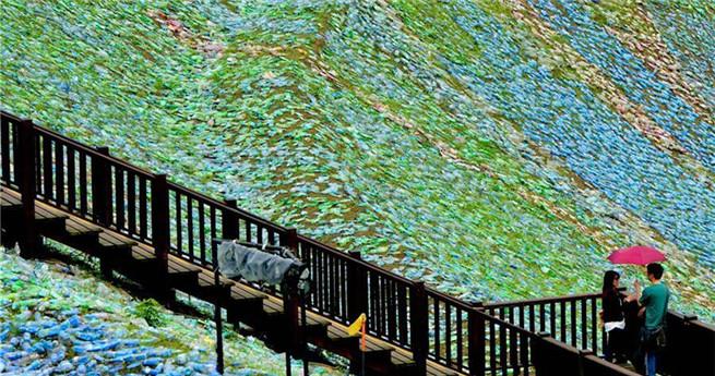 Vier Millionen Plastikflaschen stellen Gemälde von Vincent van Gogh dar