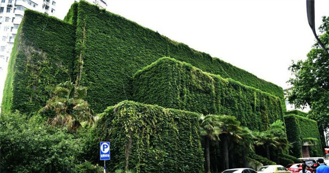 """Gewächshäuser"" der Universität Nanjing"
