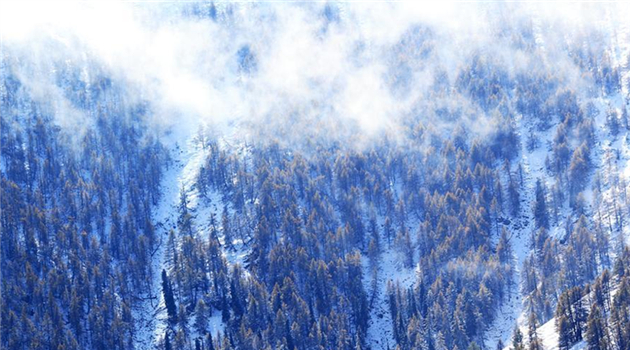 Beginnt etwa der Winter? Erster Schneefall in Xinjiang