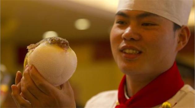 China erlaubt den Verkauf von Kugelfisch in Restaurants