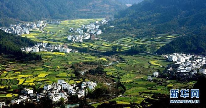 Zehn Orte mit den sch?nsten Rapsfeldern in China