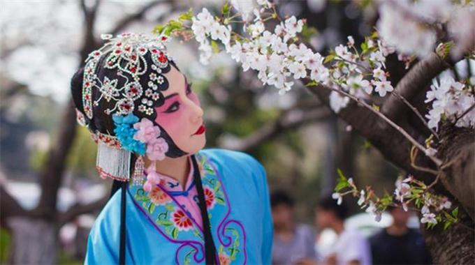 China: Zehn 'Blumenparadiese' im Frühling