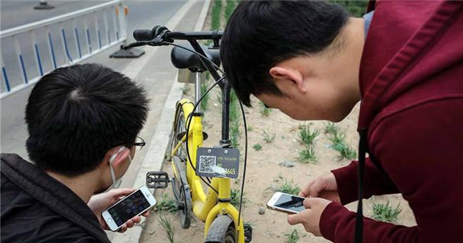 """""""Jäger der Sharing-Bikes"""": keine Tiere, sondern Bikes jagen"""