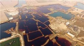 Verschmutzte Gruben veranlassen landesweite Untersuchung