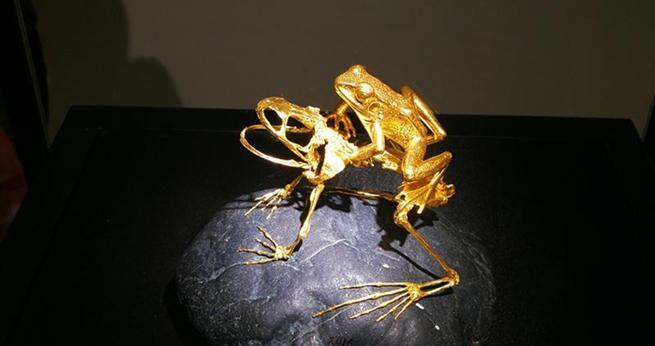 Insekten aus Gold und Holz in Chinas Nationalmuseum