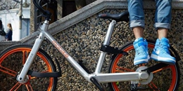 Bike-Sharing und die Sharing Economy: Eine Innovation der traditionellen Konsumidee Exklusiv