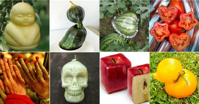 Künstlerisch: Früchte und Gemüse in seltsamen Formen