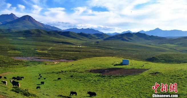 Der Herbst entfaltet seine Schönheit in der Steppe von Gansu