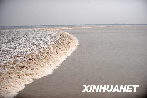 銭塘江で5年ぶりに大きな潮津波_...