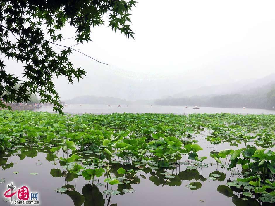 西湖 (杭州市)の画像 p1_36